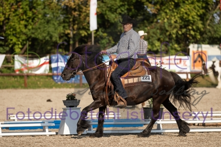 Foto 42 / EWU Biblis Ranch Riding LK4A