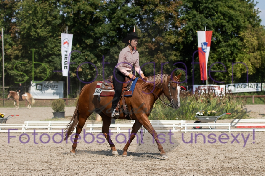 Foto 33 / EWU Biblis Ranch Riding LK3A