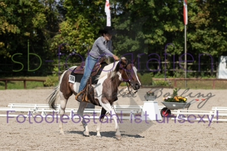 Foto 69 / EWU Biblis Ranch Riding LK3A