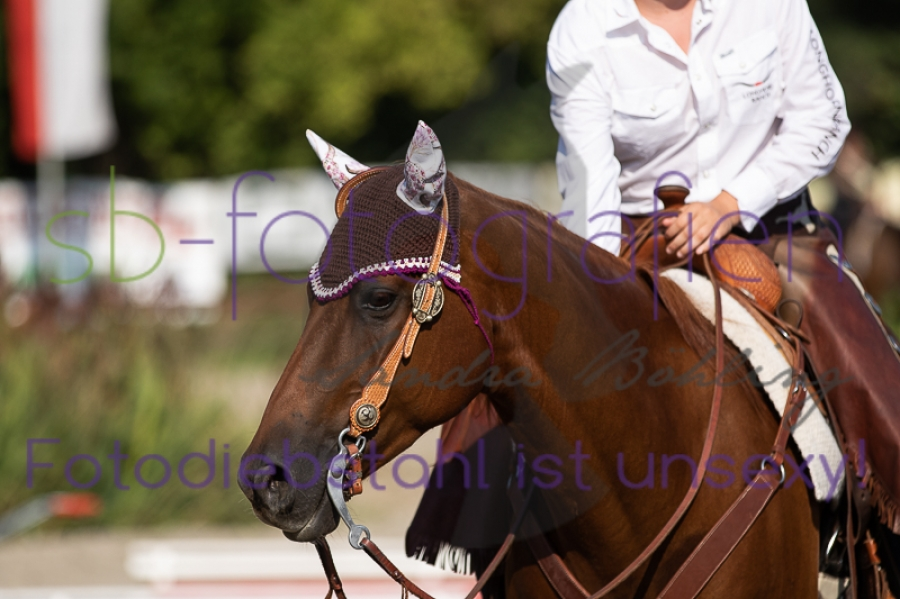 Foto 40 / EWU Biblis Ranch Riding LK3B