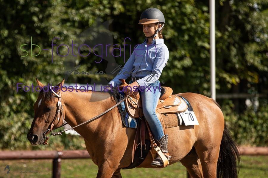 Foto 9 / 2018 EWU Biblis Walk Trot Pleasure