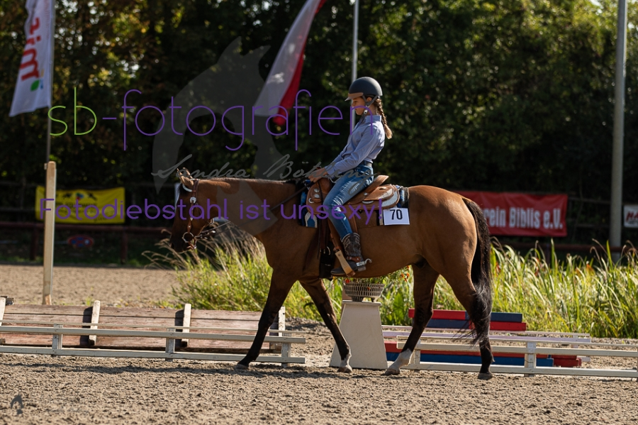 Foto 8 / 2018 EWU Biblis Walk Trot Pleasure