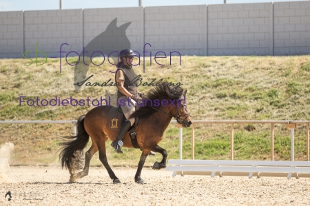 Foto 45 / 2019 Equitana Prfg. 34 Speed Trail