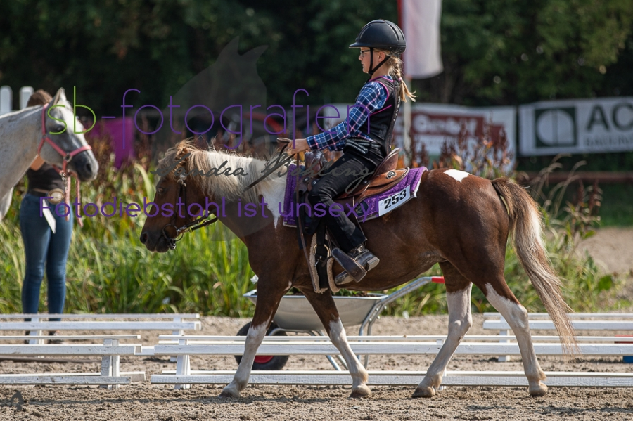 Foto 11 / 2019 EWU Walk-Trot Western Pleasure