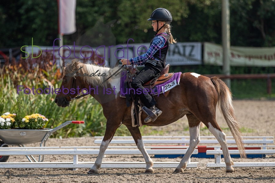 Foto 10 / 2019 EWU Walk-Trot Western Pleasure