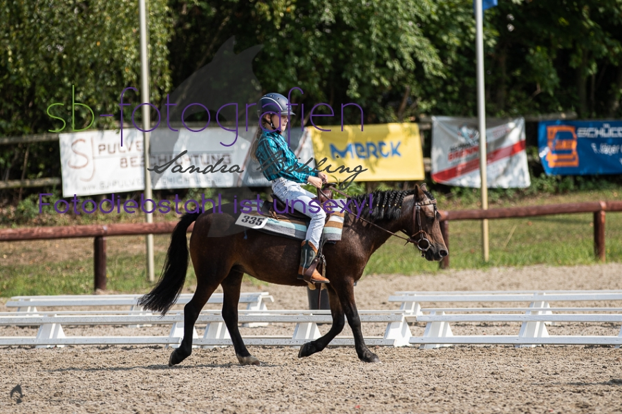 Foto 28 / 2019 EWU Walk-Trot Western Pleasure